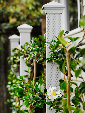ornamental bamboo fence.htm how to build a living fence htm homescapes  how to build a living fence htm